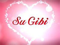 Su Gibi