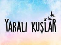 Kanal D - Yaralı Kuşlar - Hafta İçi Her Gün