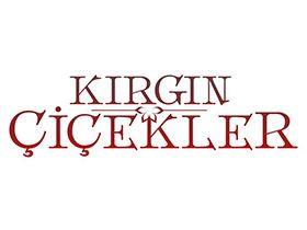 Kırgın çiçekler Jenerik Müziği Dinle şarkı Sözleri Tuna Velibaşoğlu