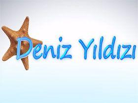 Deniz Yıldızı Logo / Profil Resmi